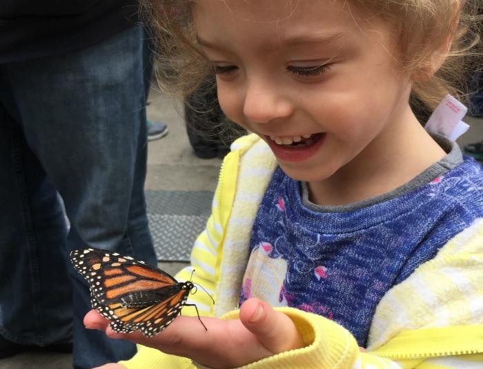 Abigailhope Monarch