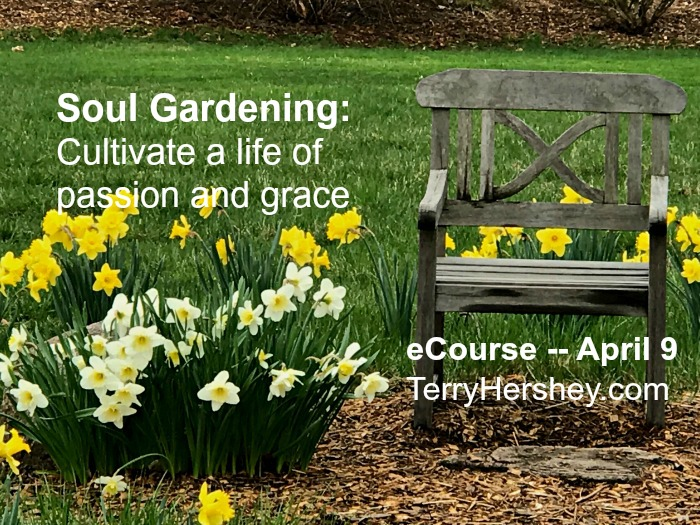 Soul Gardening: Cultivate A Life Of Passion And Grace