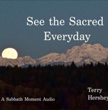 See The Sacred Every Day II